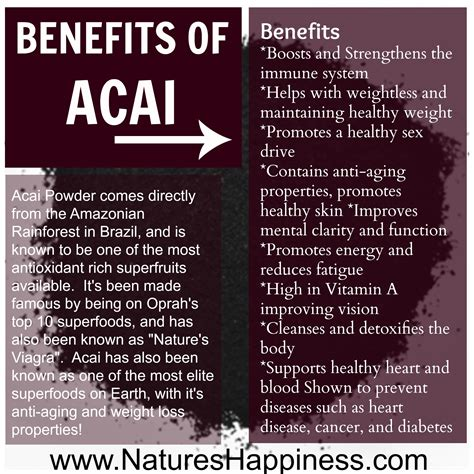Nature S Detox Benefits by Acai Berry Powder Natures Happiness News Tips