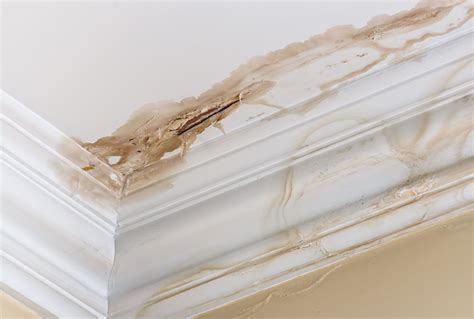 brown stain on ceiling below bathroom follow these steps to spot key signs of water damage in