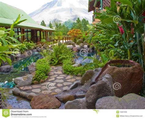 giardino tropicale giardino tropicale immagini stock libere da diritti