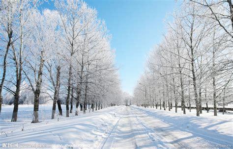 winter images 冬季雪景高清图片摄影图 自然风景 自然景观 摄影图库 昵图网nipic