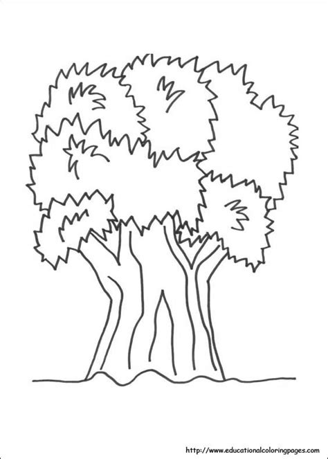 nature coloring sheets for preschool pages grig3 org
