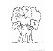 Nature Coloring Pages  Educational Fun Kids