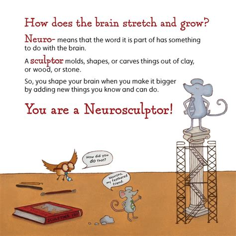 neuroplasticity brain meets new tricks books stretch and shape the brain an introduction to