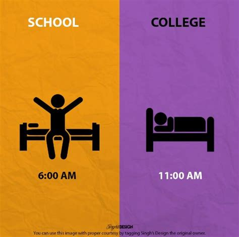 libro admissions a life in life vs college life perfectly explained in graphics