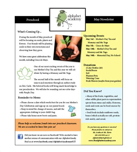 newsletter templates exles 10 preschool newsletter templates free sle exle