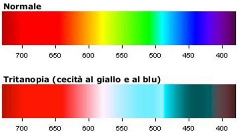 Dogs And Blindness Daltonismo Iapb Italia Onlus