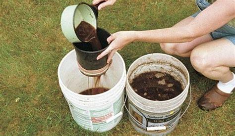 concime per pomodori in vaso concimazione orto orto