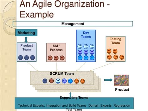 agile approaches on large projects in large organizations books transforming your sw development to agile