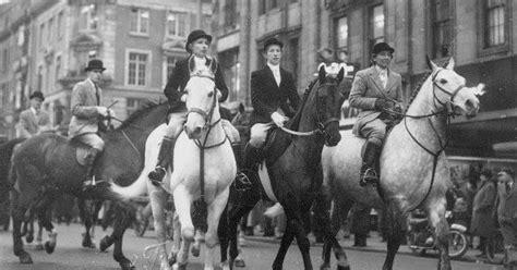 Dan Kegunaan Sho Kuda beragam manfaat kuda bagi kehidupan manusia insenia id