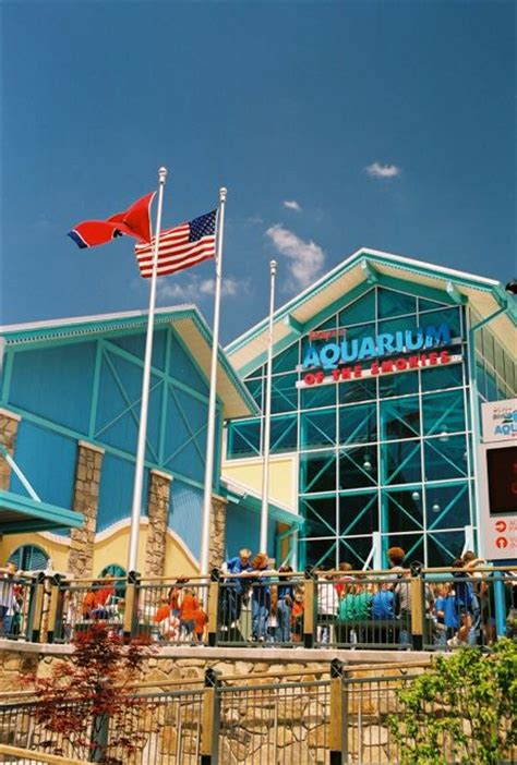 discounted pigeon forge attraction  revealed