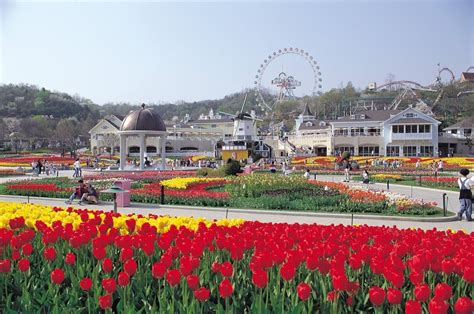 hotel everland flights hotle and south korea travel packages wonderful