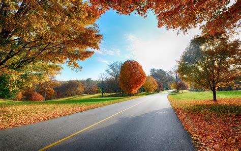 country road in the fall wallpaper 819590