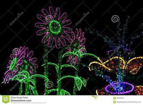 imagenes de rosas iluminadas construcci 243 n de las flores iluminadas por las l 225 mparas