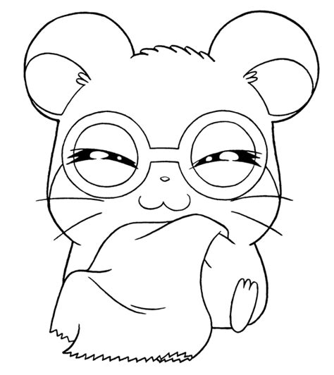 Hamster Coloring Pages Printable hamster coloring pages to print coloring pages