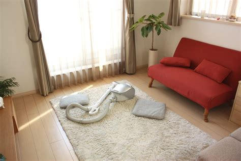 how to clean fluffy rugs how to clean a high pile shag rug porch advice