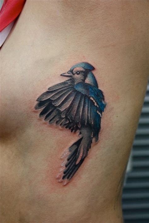 blue jay tattoo blue feather www imgkid the image kid