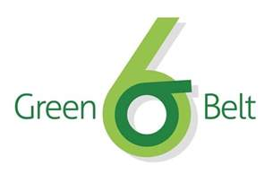Green Belt All You Would Want To About Six Sigma Green Belt Tqmi