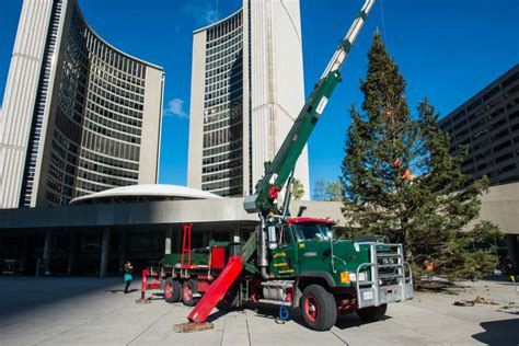 20131103 nathan phillips square christmas tree 4132 photo