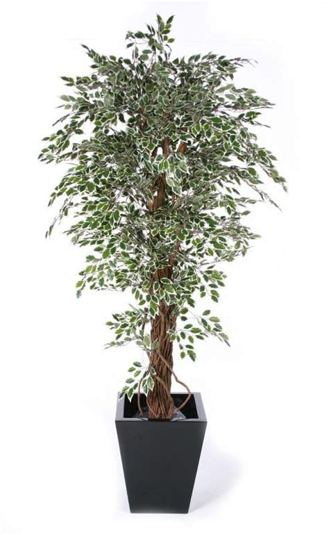 best 20 artificial plants and trees ideas on pinterest no