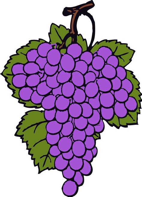 free clipart images best grapes clipart 13285 clipartion