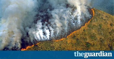deforestation   amazon environment  guardian