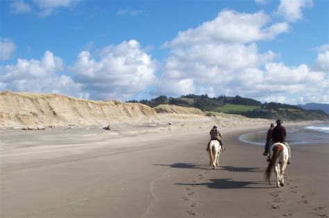 things to do in lincoln city oregon the top 10 things to do in lincoln city 2017 tripadvisor