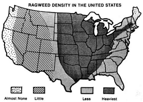ragweed map usa allergy maps and everything else about allergies from the