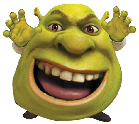 Shrek Meme - shrek google s 248 gning shrek pinterest shrek memes