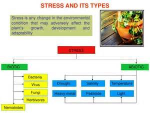Fungal Diseases That Affect Plants - jasmonates and biotic stress
