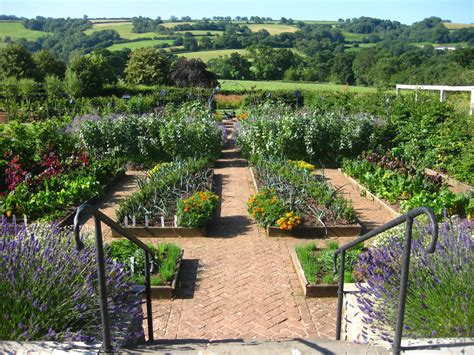 Garden Of Organic Farm Yeo Valley Farm Tours And Garden Tours Competition Hello