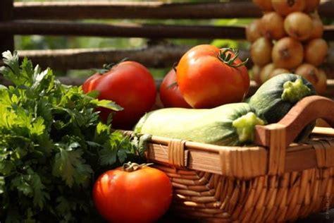 alimentazione palestra uomo alimentazione cosa mangiare prima e dopo l allenamento