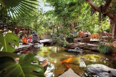 whatever floats your boat nederlands tropical backyards ideas small tropical garden design