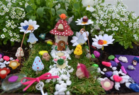 Garden Decoration Kits by Garden Kits Gardening Supplies Finlee And Me