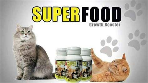 Vitamin Kucing Food Growth Booster Vitamin Kucing Anda 11street