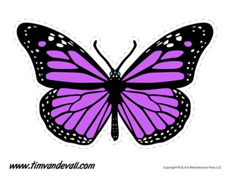 printable images of a butterfly printable butterfly templates and butterfly shapes