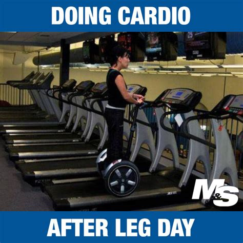 After Leg Day Meme - 13 hilarious quot after leg day quot memes for people who really