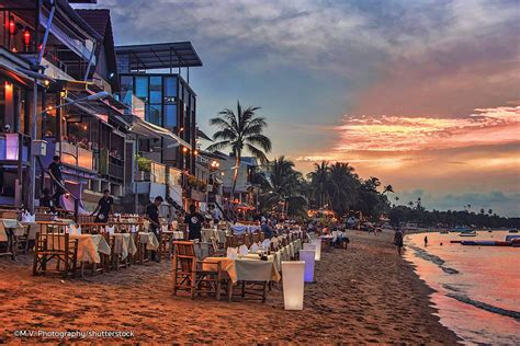10 best local thai restaurants in bophut real thai