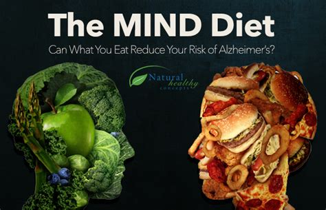 diet for the mind the science on what to eat to prevent alzheimer s and cognitive decline from the creator of the mind diet books the mind diet for reduced risk of alzheimer s healthy