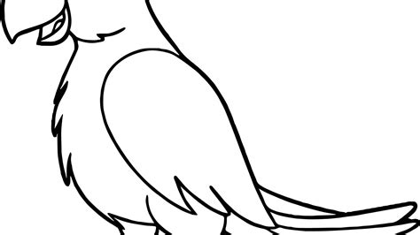 parrot coloring page coloring pages parrot and print free printable