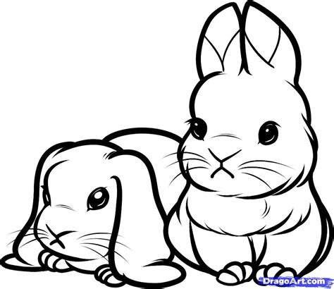 printable coloring pages of baby bunnies animals
