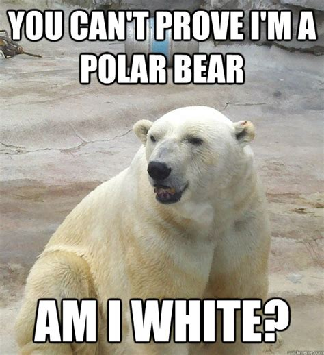 Polar Bear Meme - bad pun polar bear memes quickmeme