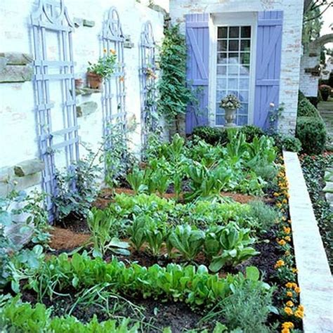 vegetable garden backyard how to plan a vegetable garden