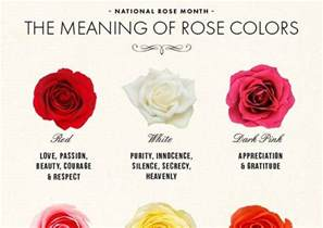 what do the colors of flowers national month the meaning of colors color