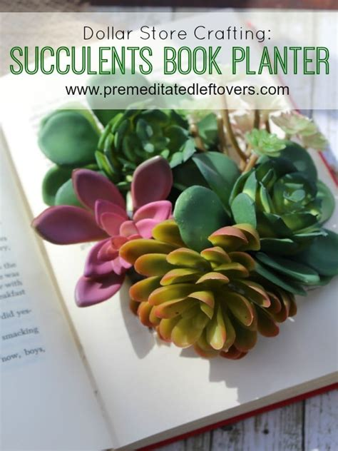 diy succulents diy succulents book planter