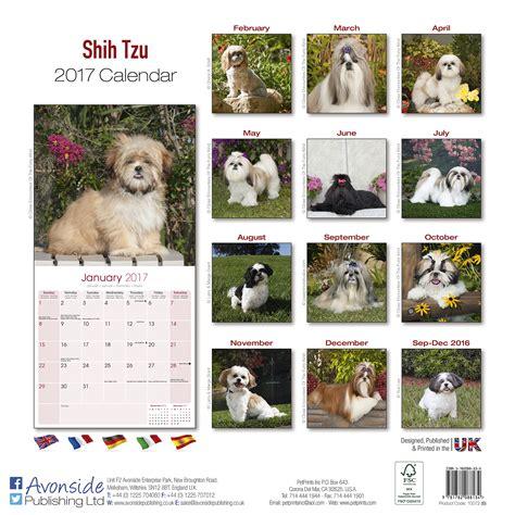 shih tzu calendar 2017 shih tzu calendar 2017 pet prints inc