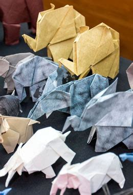 origami records wcs 96 elephants caign smashed guinness world record