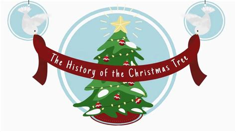 origin of the christmas tree bbc history of the tree