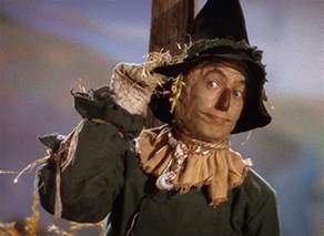 pictures amp photos of the scarecrow imdb