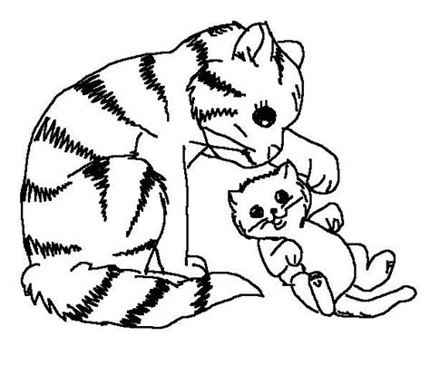 cute baby cats coloring pages animal pictures