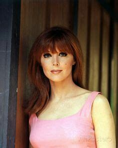 what hair color does tina faye advertise he 25 best ideas about tina louise on pinterest classic